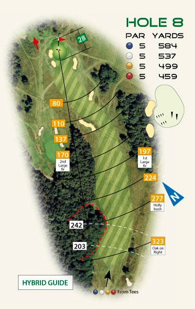 Hybrid style golf course hole diagram by K&M Golf